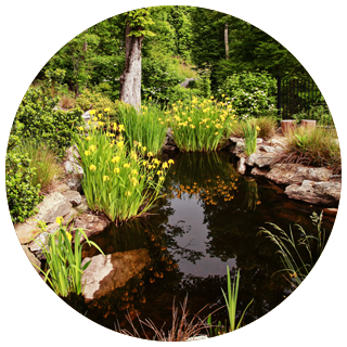 irrigation-water-features-ponds-waterfalls