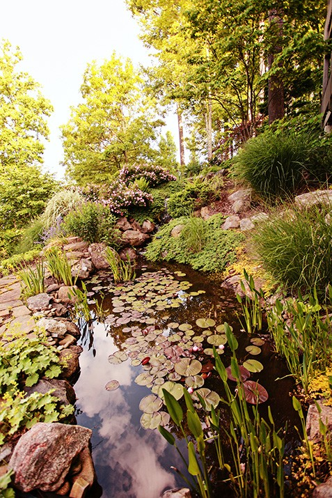 Landscape Design at Banks Creek by Gardens for Living