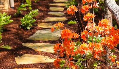 Landscaping Services; Landscape Maintenance in Asheville
