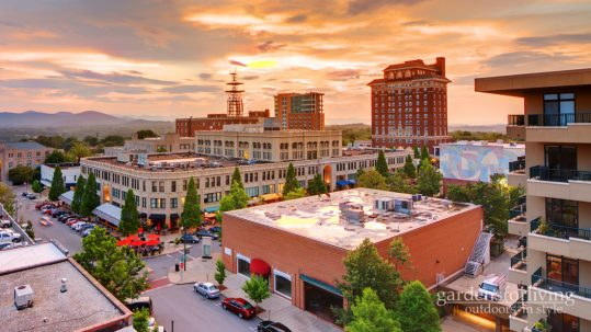 Why i love living in Asheville, North Carolina